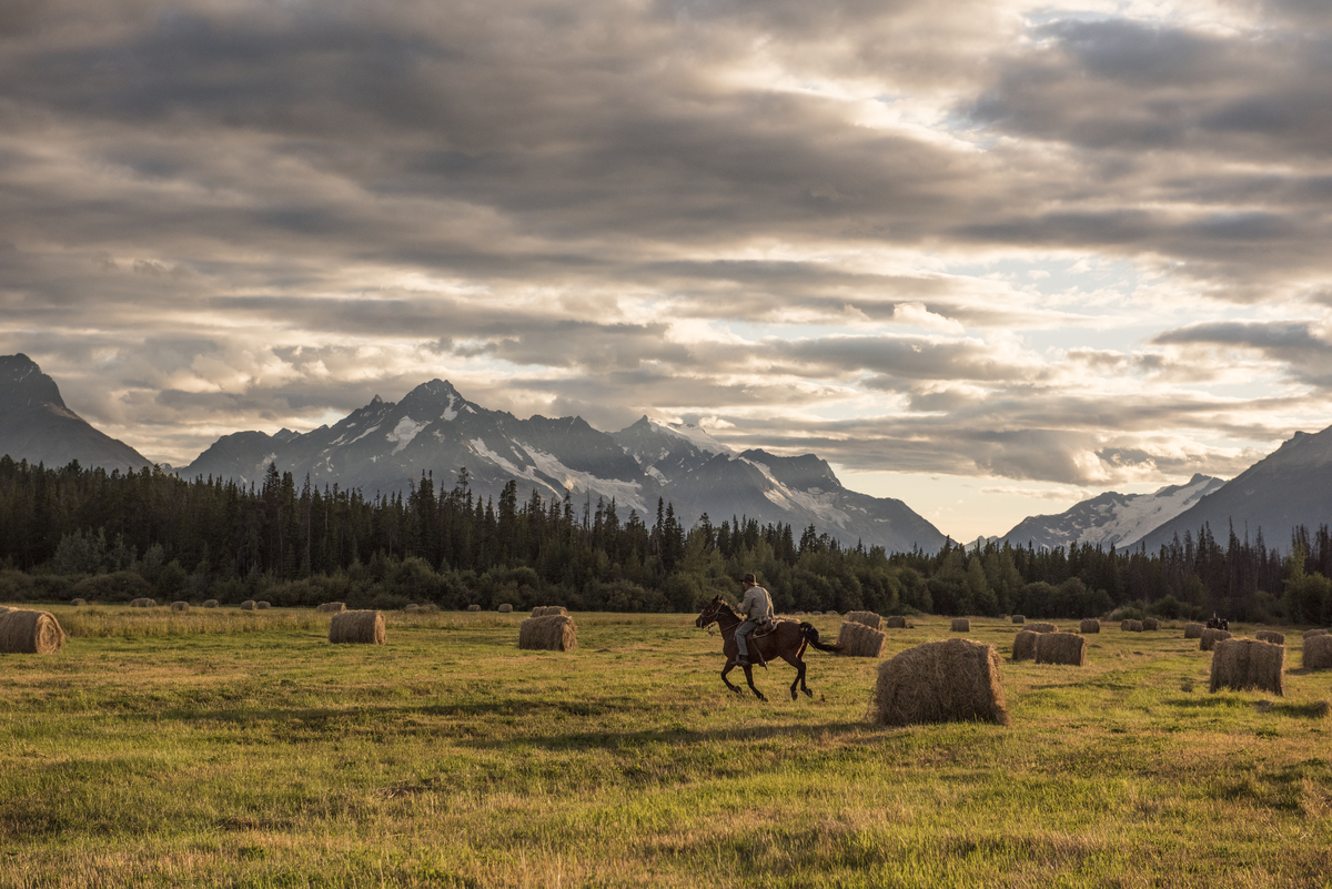 A person on horseback through the Chilcotin region in BC