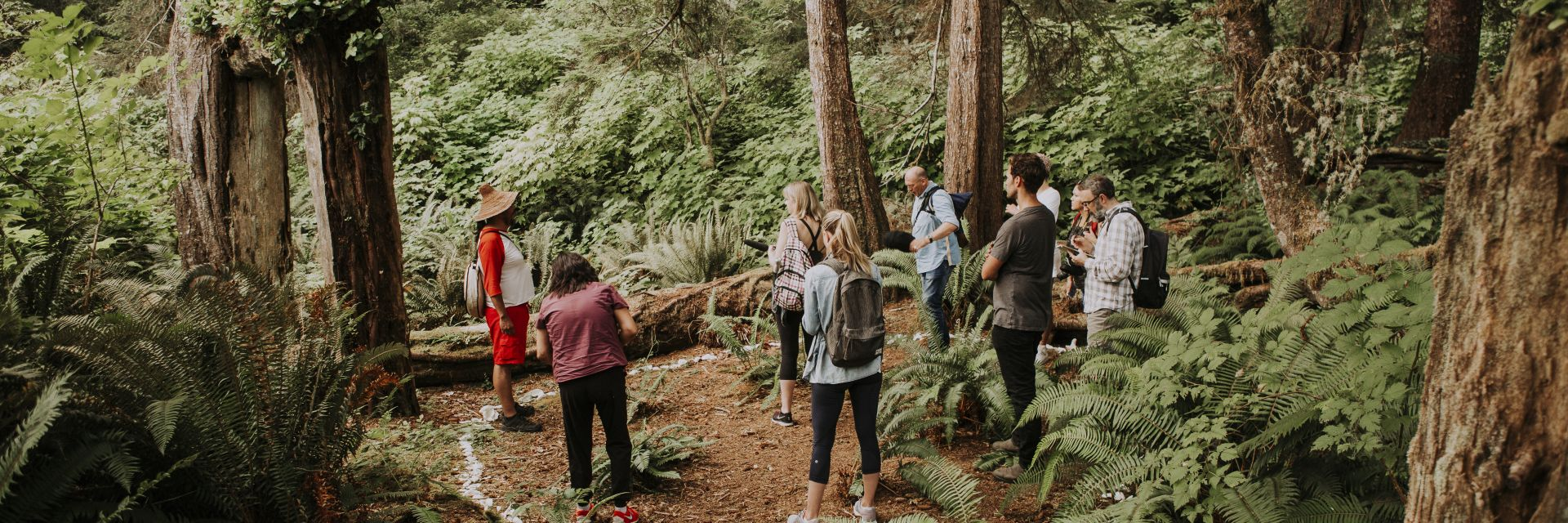 A group gathers in the Vancouver Island rainforest during a tour.