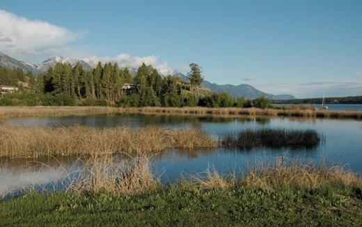 Lakeshore-landscape