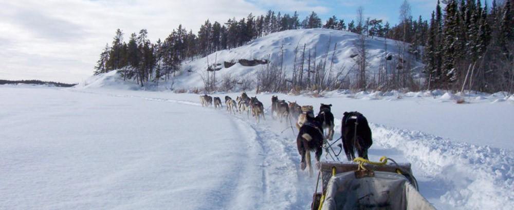 northern-star-kennels-dog-sledding-non-high-res (2)