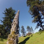 Haida Style Expeditions_image